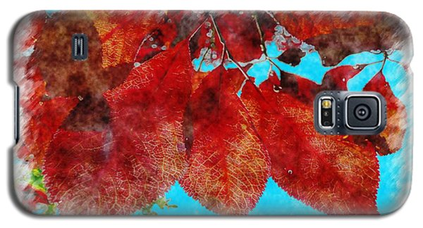Galaxy S5 Case featuring the photograph Red Leaves by Jean Bernard Roussilhe