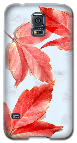 Red Leaves On Blue Texture Galaxy S5 Case by Kae Cheatham