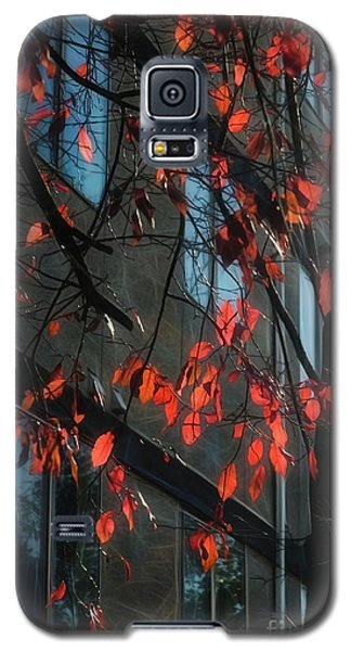Galaxy S5 Case featuring the photograph Red Leaves by Yulia Kazansky