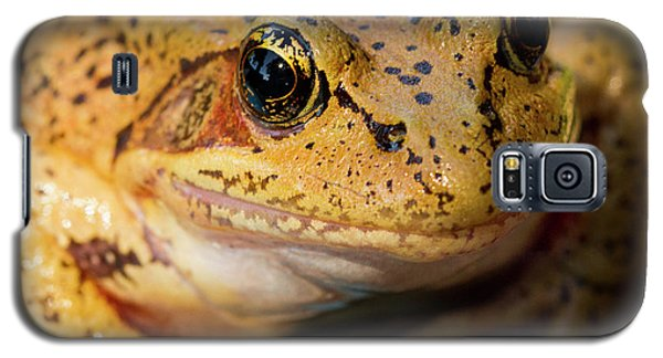 Galaxy S5 Case featuring the photograph Red Leg Frog by Jean Noren