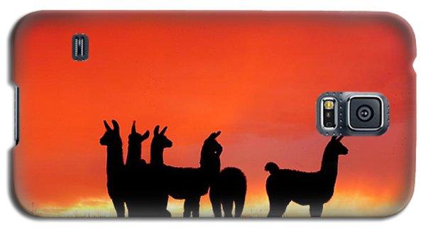 Red Llama Sunset 1 Galaxy S5 Case