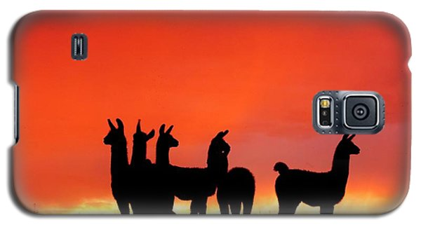 Red Llama Sunset 1 Galaxy S5 Case