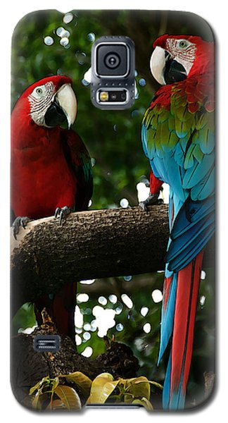 Red Macaws Galaxy S5 Case