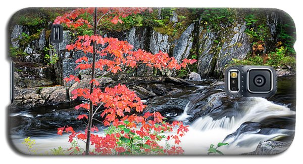 Red Maple Gulf Hagas Me. Galaxy S5 Case