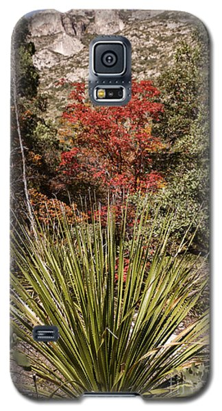 Galaxy S5 Case featuring the photograph Red by Melany Sarafis