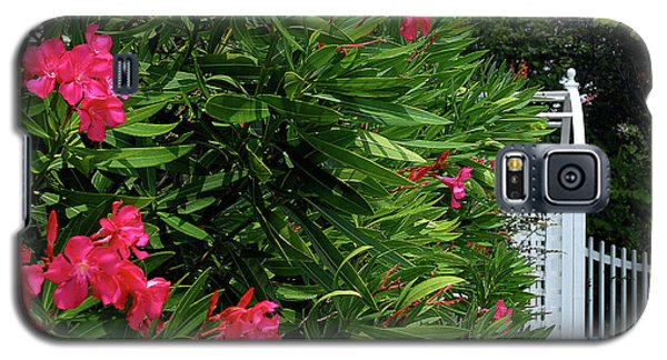 Galaxy S5 Case featuring the photograph Red Oleander Arbor by Marie Hicks