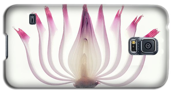 Red Onion Translucent Peeled Layers Galaxy S5 Case