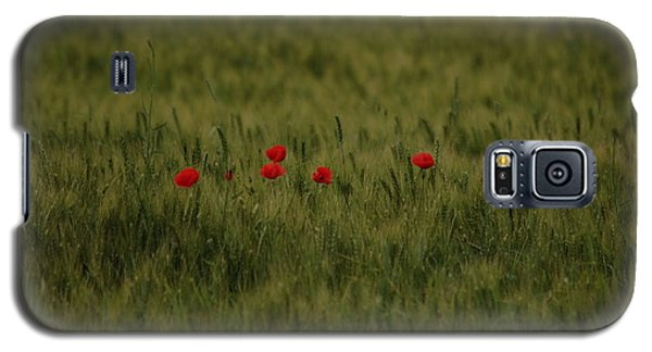 Red Poppies In Meadow Galaxy S5 Case