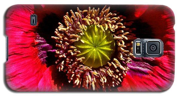 Red Poppy 014 Galaxy S5 Case