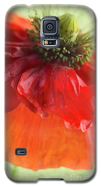 Galaxy S5 Case featuring the photograph Red Poppy by Elena Nosyreva