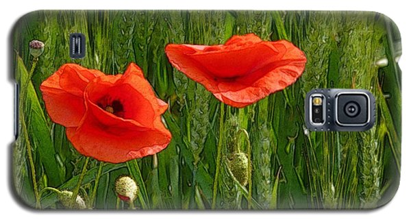 Red Poppy Flowers In Grassland 2 Galaxy S5 Case