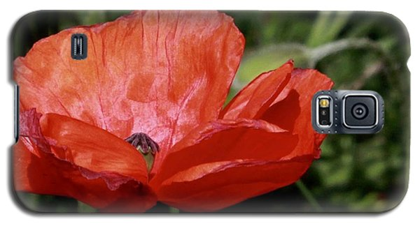 Red Poppy Galaxy S5 Case