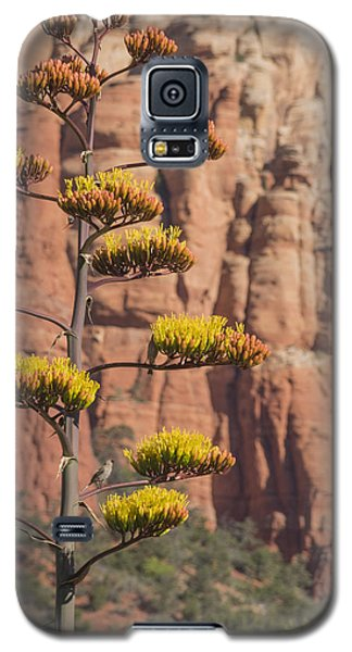 Galaxy S5 Case featuring the photograph Red Rocks And Century Plant by Laura Pratt