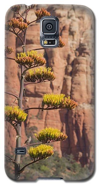 Red Rocks And Century Plant Galaxy S5 Case