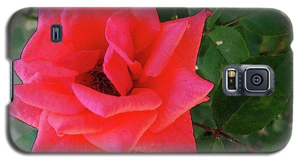 Pink Rose  Galaxy S5 Case by Don Pedro De Gracia