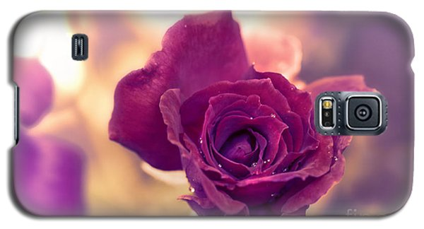 Red Rose Galaxy S5 Case by Charuhas Images