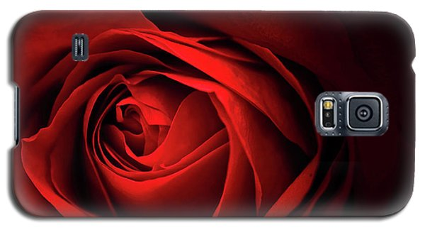 Red Rose Close Galaxy S5 Case by Charline Xia