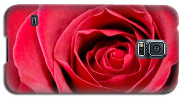 Galaxy S5 Case featuring the photograph Red Rose by DJ Florek