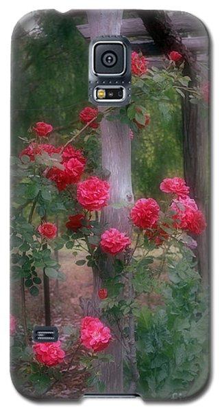 Red Rose Dream Galaxy S5 Case