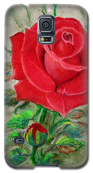 Red Rose Galaxy S5 Case by Jasna Dragun