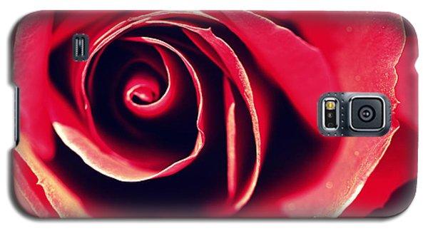 Red Rose Galaxy S5 Case by Joseph Skompski