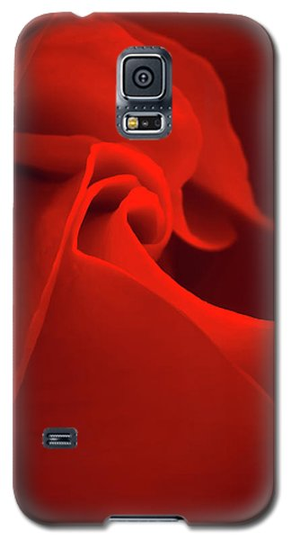 Red Rose Macro Galaxy S5 Case