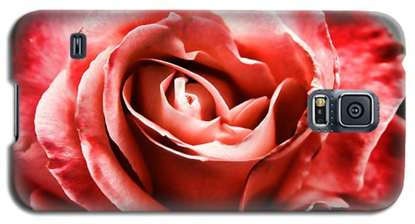 Galaxy S5 Case featuring the photograph Red Rose  by Mariola Bitner