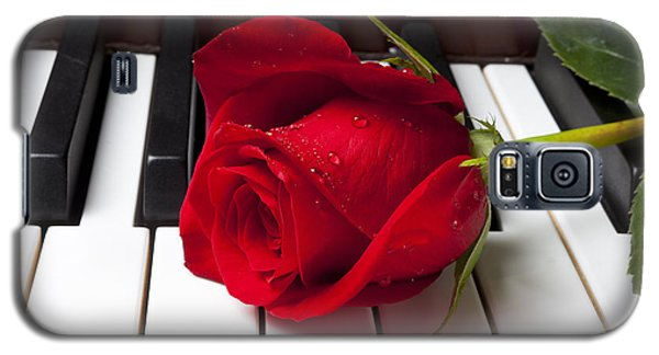 Red Rose On Piano Keys Galaxy S5 Case by Garry Gay