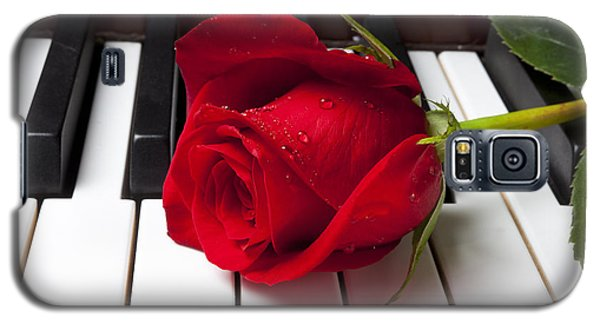 Rose Galaxy S5 Case - Red Rose On Piano Keys by Garry Gay