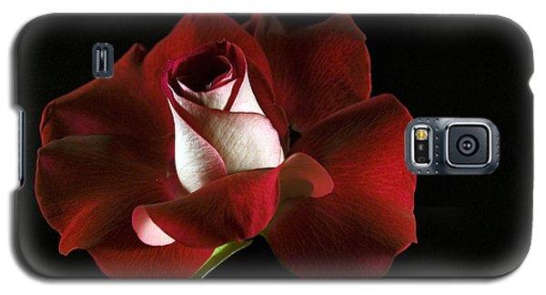 Red Rose Petals Galaxy S5 Case