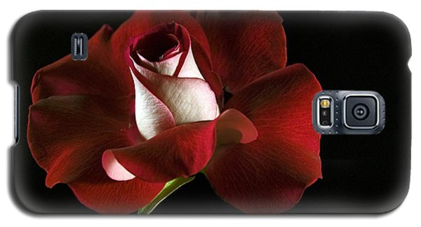 Galaxy S5 Case featuring the photograph Red Rose Petals by Elsa Marie Santoro