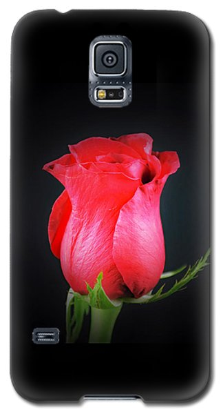Red Rose Shows Love  Galaxy S5 Case