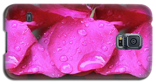 Red Roses And Raindrops Galaxy S5 Case