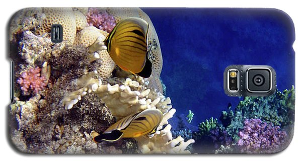Red Sea Exotic World Galaxy S5 Case