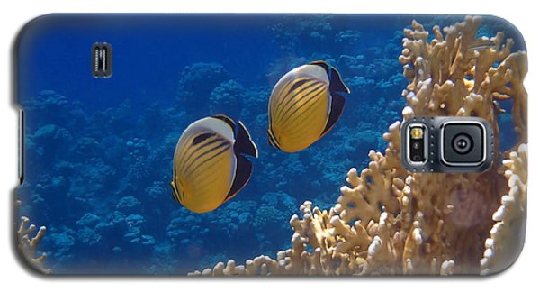 Red Sea Exquisite Butterflyfish  Galaxy S5 Case