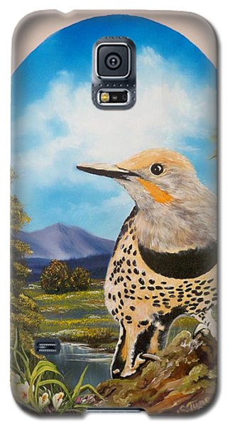 Flying Lamb Productions                       Red Shafted Flicker Galaxy S5 Case