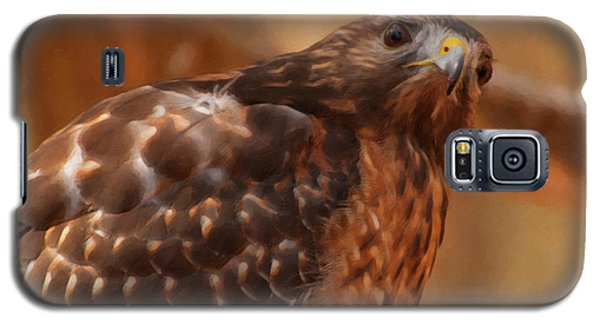 Red Shouldered Hawk 1  Galaxy S5 Case by Chris Flees