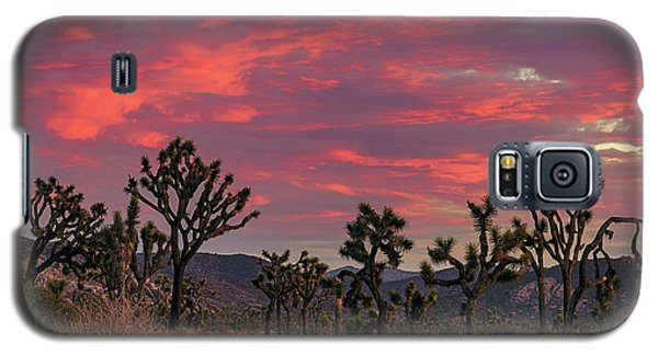 Red Sky Over Joshua Tree Galaxy S5 Case