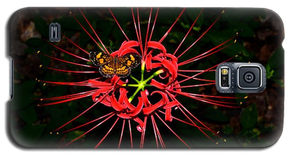 Red Spider Lily And Painted Lady Butterfly 001 Galaxy S5 Case