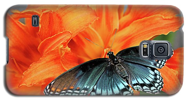 Galaxy S5 Case featuring the photograph Red Spotted Fritillary by Kristin Elmquist