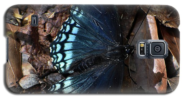 Galaxy S5 Case featuring the photograph Red Spotted Purple Admiral by Skip Willits