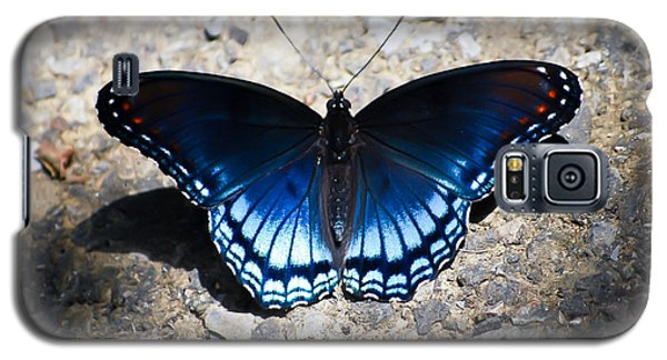 Red-spotted Purple Butterfly Galaxy S5 Case by Kerri Farley