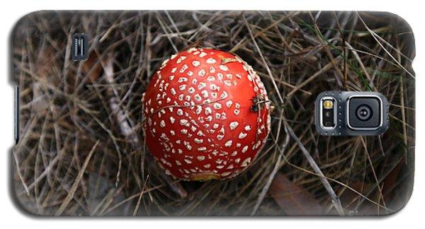 Red Spotty Toadstool Galaxy S5 Case by Nareeta Martin