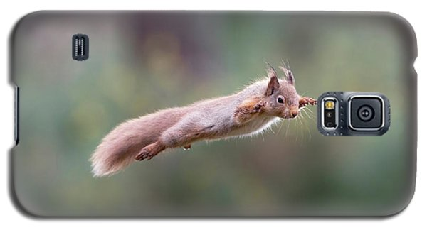 Red Squirrel Leaping Galaxy S5 Case