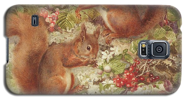 Red Squirrels Gathering Fruits And Nuts Galaxy S5 Case