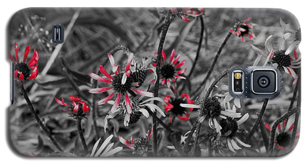 Galaxy S5 Case featuring the photograph Red Streaks by Deborah  Crew-Johnson