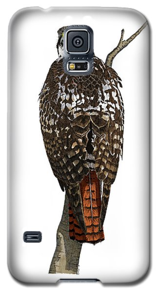 Red-tailed Hawk - Color Galaxy S5 Case