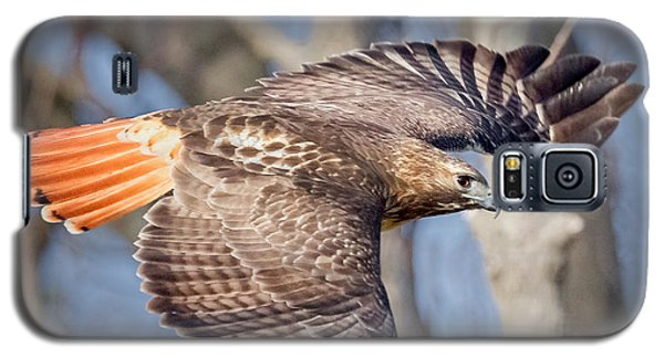Galaxy S5 Case featuring the photograph Red Tailed Hawk Flying by Bill Wakeley