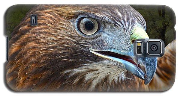 Red-tailed Hawk Portrait Galaxy S5 Case by Sandi OReilly