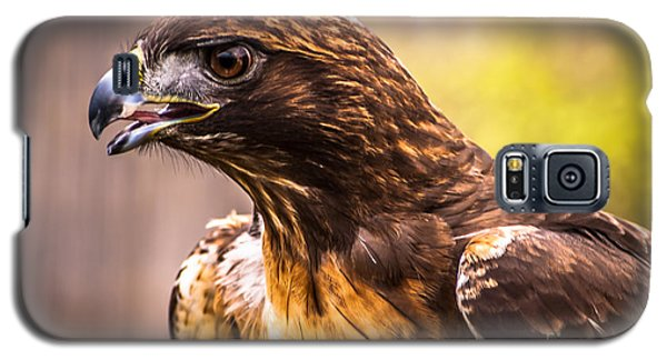 Red Tailed Hawk Profile Galaxy S5 Case